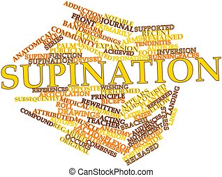 Supination - Abstract word cloud for Supination with related...