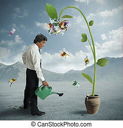 Plant of money - Businessman and a plant of money