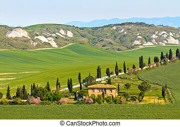 Typical Tuscany landscape view