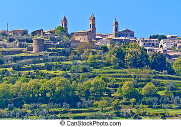 Montalcino, Tuscany - Montalcino - View on City and Castle,...
