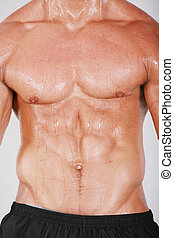 Muscular and tanned male naked torso