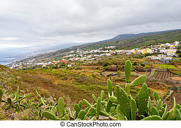 Tenerife. Canary islands - Landscape of western Tenerife....