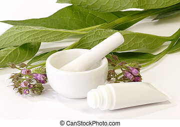 Comfrey Ointment - Comfrey plant with mortar and tube on...