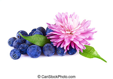 a handful of blueberries and flower