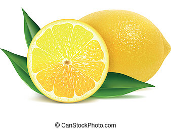 Fresh lemons with leaves - Vector illustration of fresh...
