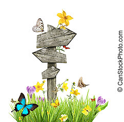 Signpost in meadow with butterflies, concept of spring