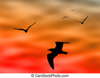 bird flying in the sky drawing