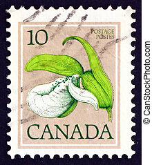 Postage stamp Canada 1977 Franklin?s Lady?s-slipper, Orchid,...