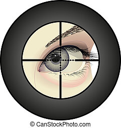 sniper - shooters eye in the viewfinder optical