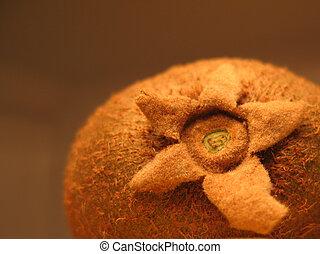 Kiwi fruit up close