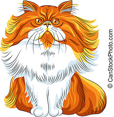 Vector color sketch fluffy Persian cat - Vector color sketch...
