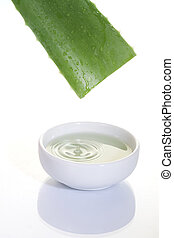 aloe vera - Aloe Vera sliced leaf with juice drop on white...