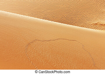 Animal tracks on sand dunes - A view of animal tracks on...