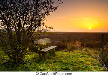 rest place with bench at sunrise - rest place with wooden...