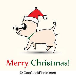 Chihuahua with Santa hat