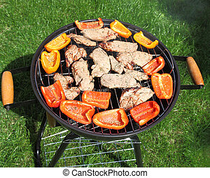 Grilling meat and vegetables on green grass