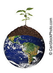 Renewing the Earth - Tree Seedling Atop the Planet Earth....