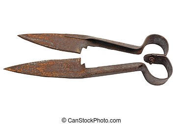 Shearing scissors - Antique sheep shearing scissors Isolated...