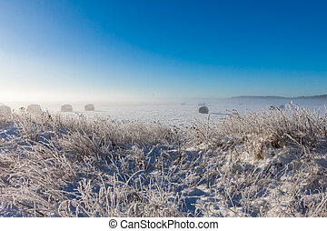 snowy hay bales near farm with grass (foggy weather)