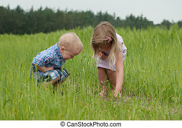 Kids seeking bugs - Girl and boy on the green field seeking...