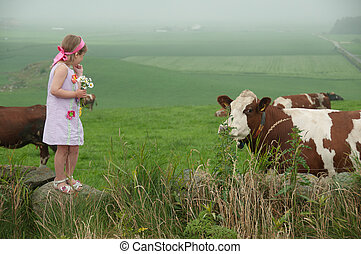 A girl and cows - A little girl with flowers and cows on the...