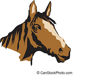 Brown HOrse Head - Horse Head