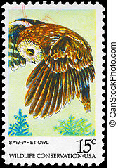 USA - CIRCA 1978 Owl - USA - CIRCA 1978: A Stamp printed in...