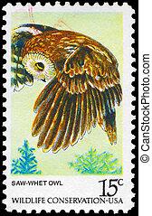 USA - CIRCA 1978 Owl - USA - CIRCA 1978: A Stamp printed in...