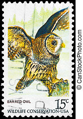 USA - CIRCA 1978 Barred Owl - USA - CIRCA 1978: A Stamp...