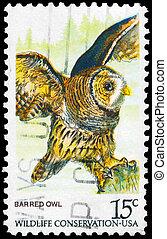 USA - CIRCA 1978 Barred Owl - USA - CIRCA 1978: A Stamp...