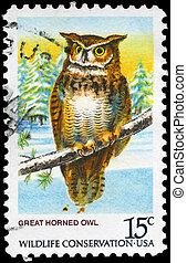 USA - CIRCA 1978 Great Horned Owl - USA - CIRCA 1978: A...
