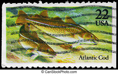 USA - CIRCA 1986 Atlantic Cod - USA - CIRCA 1986: A Stamp...