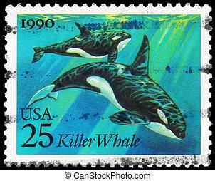 USA - CIRCA 1990 Killer Whale - USA - CIRCA 1990: A Stamp...
