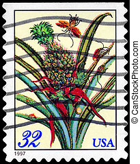USA - CIRCA 1997 Flowering Pineapple - USA - CIRCA 1997: A...