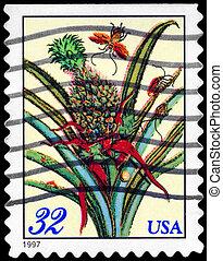 USA - CIRCA 1997 Flowering Pineapple