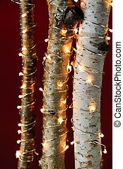 Christmas lights on birch branches