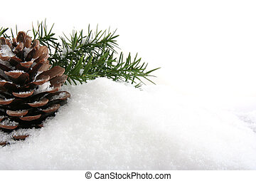 Christmas background of pines cone