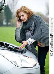 Roadside Assistance Needed - Female driver needed help as...