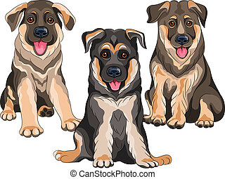 Vector set smiling puppies dog German shepherd - Vector set...