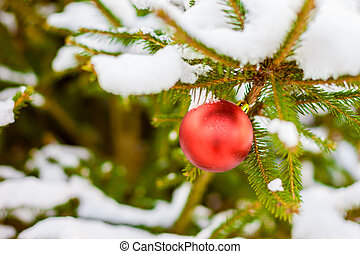 Christmas Balls on Tree - Merry Christmas and a Happy New...