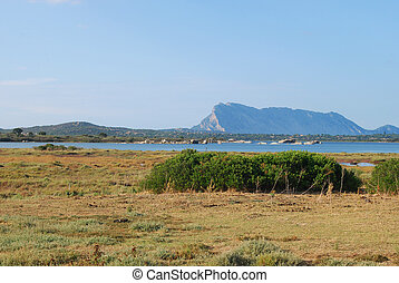 The pond of San Teodoro - Sardinia - Italy - 598