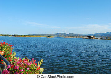 The coast of Sardinia - San Teodoro - Italy - 697