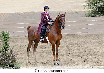 Woman riding Saddlebred horse in English livery