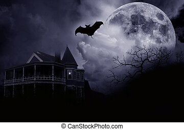 Dark night - A dark halloween night