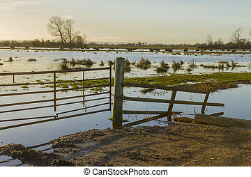 Somerset Levels 2 - Gateway to floodwater on Somerset Levels...