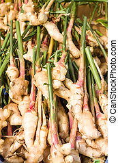 Fresh ginger root at the market - Fresh ginger root at the...