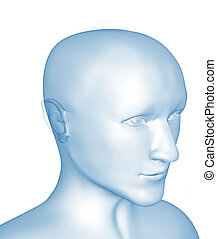 Transparent 3d head of the man - x-ray. Object over white