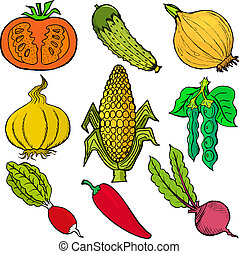 vegetables - Set of hand drawn, vector, cartoon illustration...