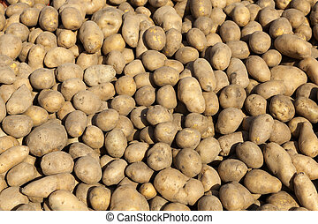 Raw potatoes as background