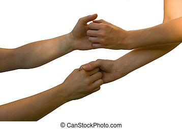 hands and arms holding each other - four hands and arms hold...
